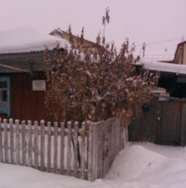 В Тюменской области чиновники спилили новогоднюю елку в палисаднике у старушки (2 фото)