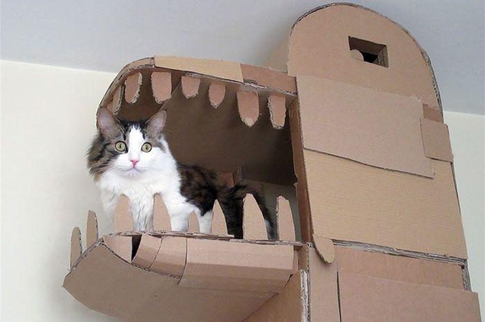 Картонный замок для любимой кошки (5 фото)
