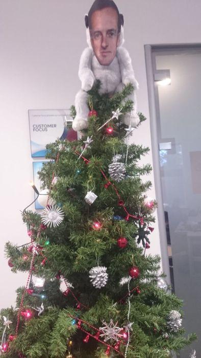 Креативные новогодние елки (26 фото)
