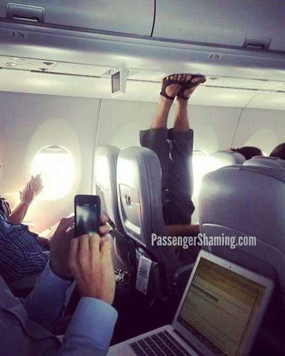 Странные пассажиры самолетов (24 фото)