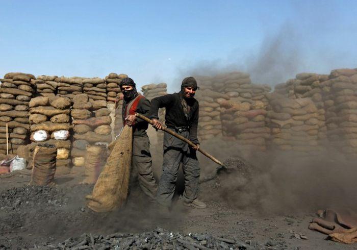 http://trinixy.ru/pics5/20161212/life_in_afghanistan_05.jpg