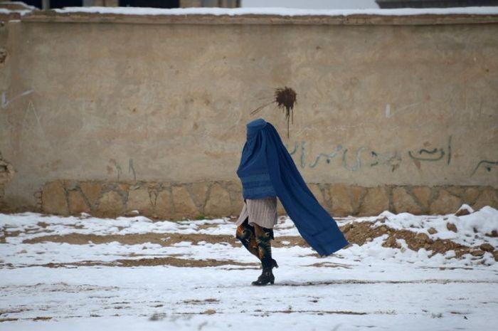 http://trinixy.ru/pics5/20161212/life_in_afghanistan_14.jpg