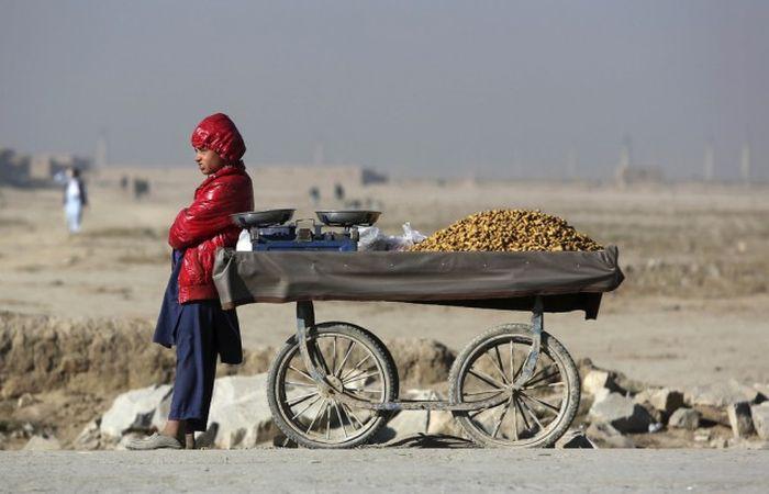 http://trinixy.ru/pics5/20161212/life_in_afghanistan_25.jpg