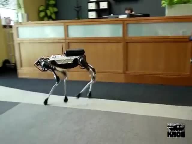 Непростая «жизнь» четвероногого робота компании BostonDynamics