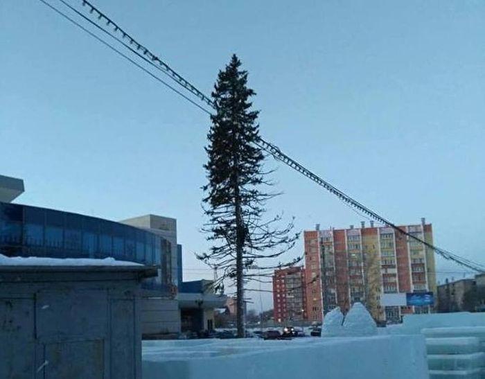 Жителей Копейска возмутила лысая елка на центральной площади города (2 фото)