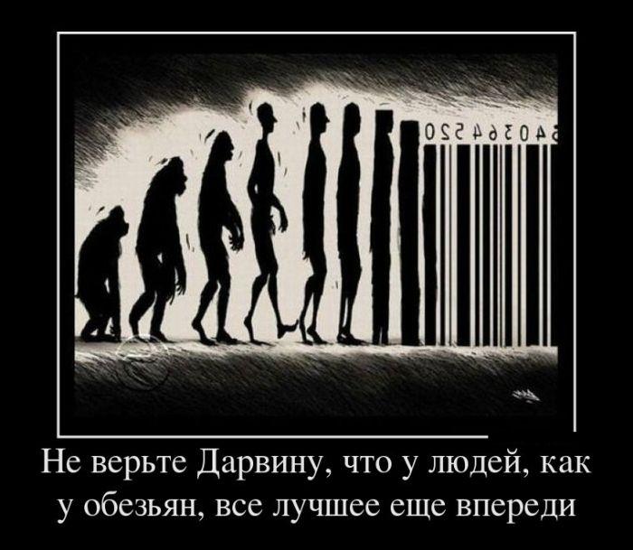 http://trinixy.ru/pics5/20161215/demotivatory_26.jpg