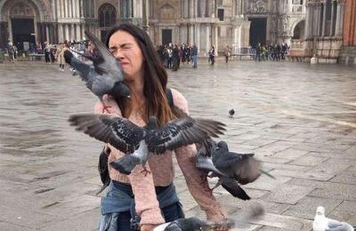 Девушка решила сделать классное фото с голубями у собора Святого Марка (2 фото)
