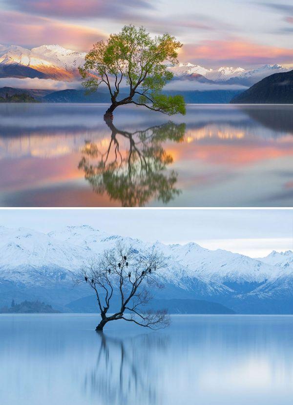 Зимнее преображение (15 фото)