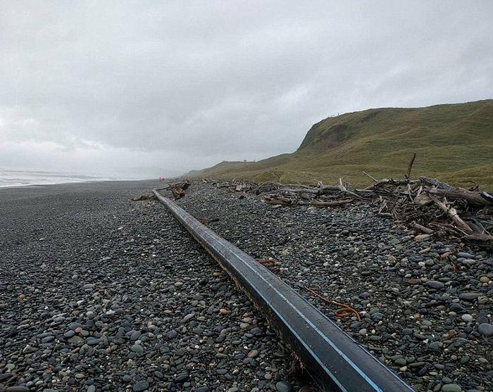 Неизвестный объект на пляже Новой Зеландии (4 фото)