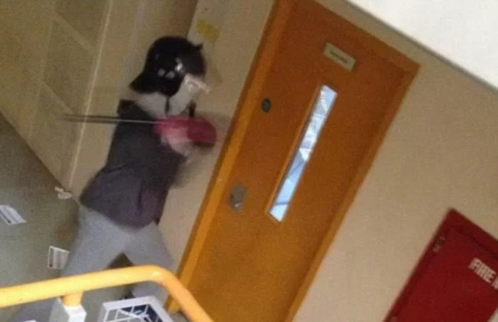 Бунт в тюрьме Бирмингема (6 фото + видео)