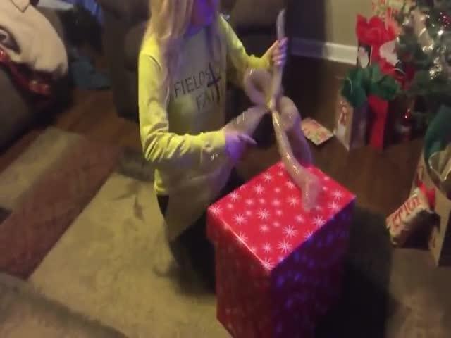 Трогательная реакция девушки, получившей в подарок щенка