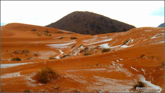 В пустыне Сахара выпал снег (9 фото)