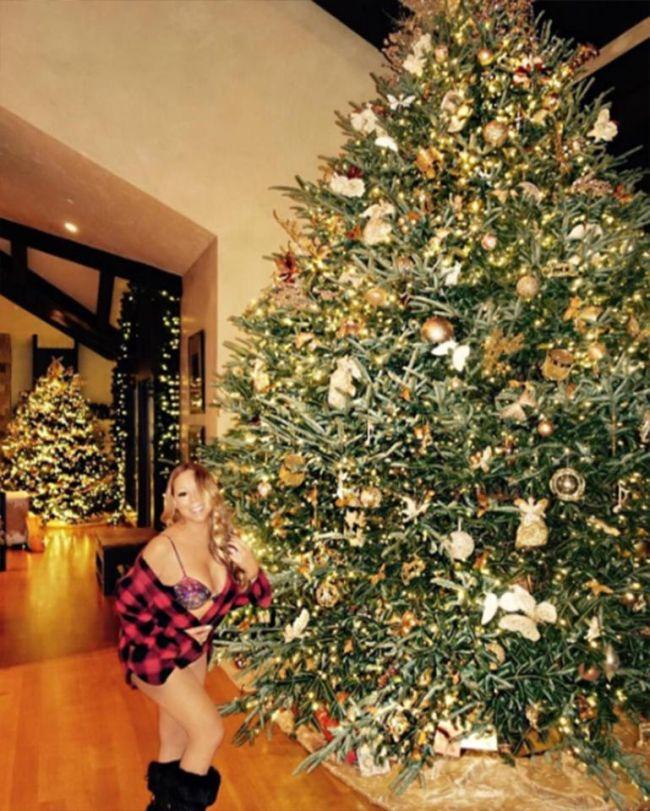 Мэрайя Кэри побаловала поклонников откроенными рождественскими фото (2 фото)