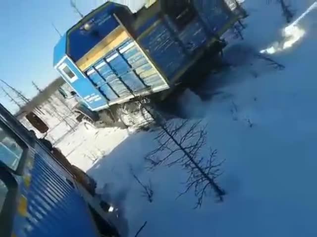 В Якутии вахтовики намеренно задавили медведя