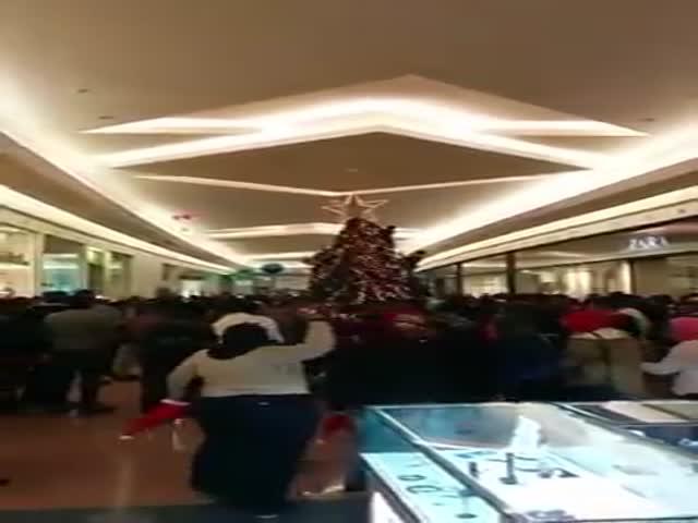 Новоиспеченные европейцы празднуют Рождество