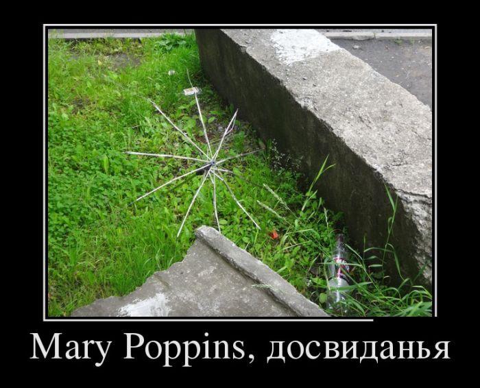 http://trinixy.ru/pics5/20161229/demotivatory_20.jpg
