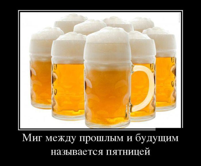 http://trinixy.ru/pics5/20161229/demotivatory_29.jpg