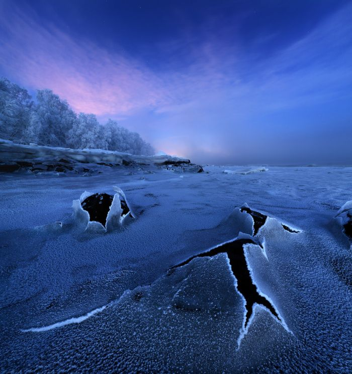 Победители фотоконкурса «Дикая природа России-2016» журнала National Geographic