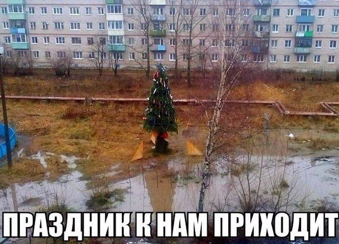 http://trinixy.ru/pics5/20161229/podborka_vecher_30.jpg