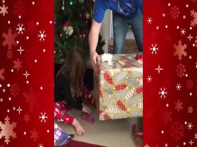 Рождественский подарок ускользнул от девочки