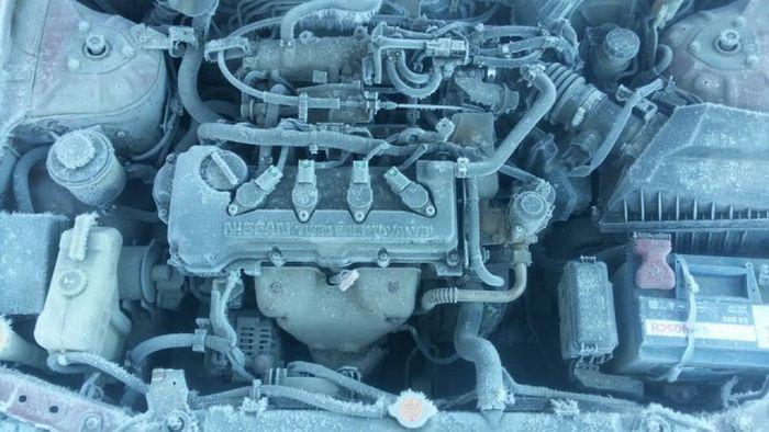 Ледяная ловушка (5 фото)