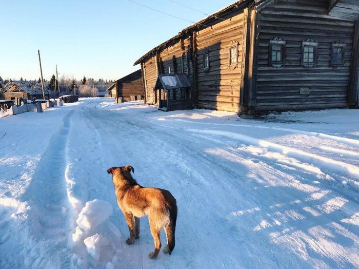 Кинерма - одна из самых красивых деревень России (21 фото)