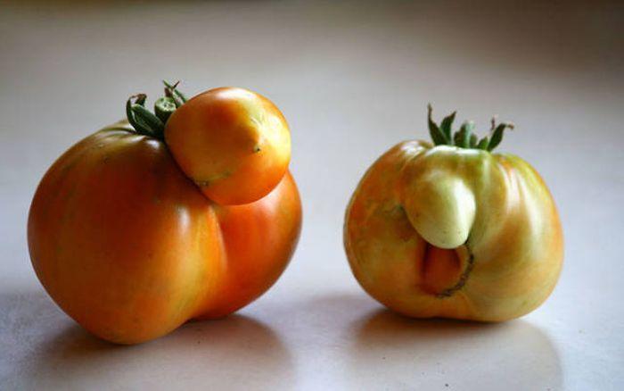 Овощи и фрукты причудливой формы (50 фото)