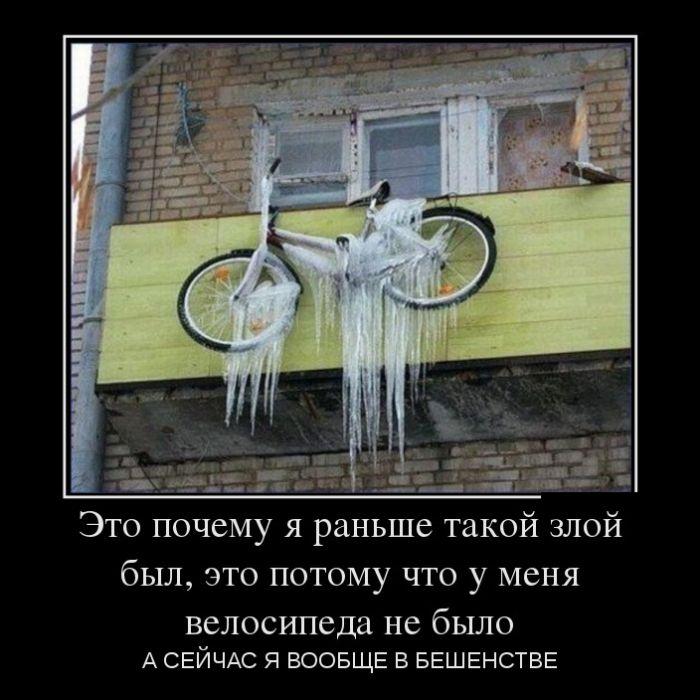 http://trinixy.ru/pics5/20170119/demotivatory_27.jpg