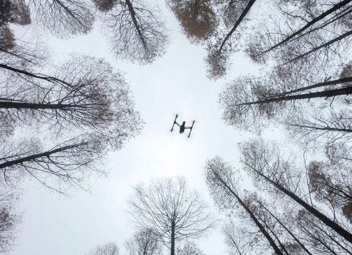 Лучшие фото 2016 года, сделанные с помощью дронов (13 фото)