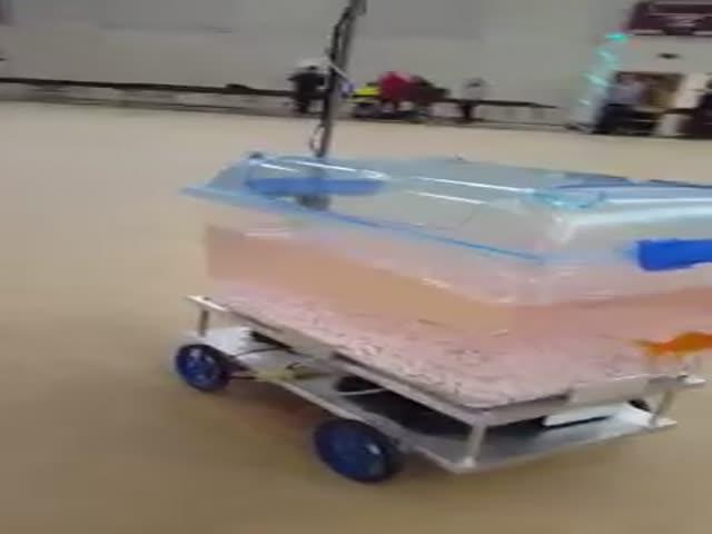 Передвижной аквариум-робот для золотой рыбки