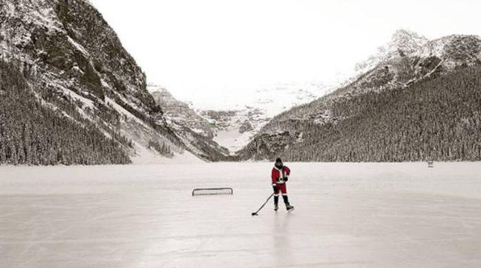 Обычное дело в Канаде (39 фото)