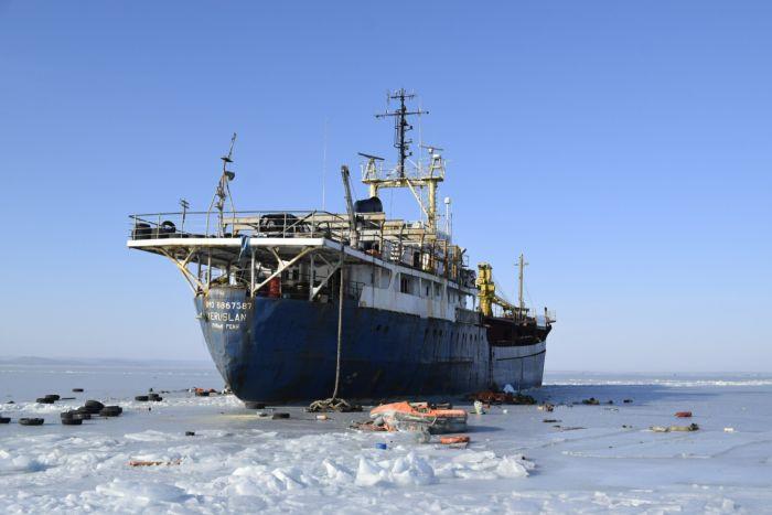 У Владивостока брошенный сухогруз вмерз в Амурский залив (7 фото)