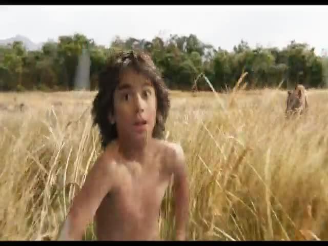 Фильмы, номинированные на «Оскар» за лучшие визуальные эффекты