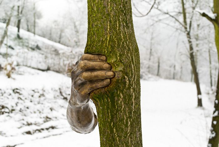 Скульптура в дереве (3 фото)