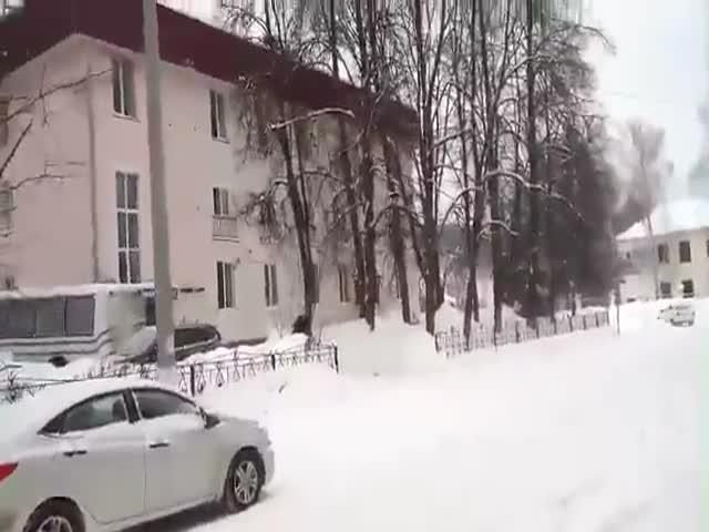 Медведь на улицах Жигулевска