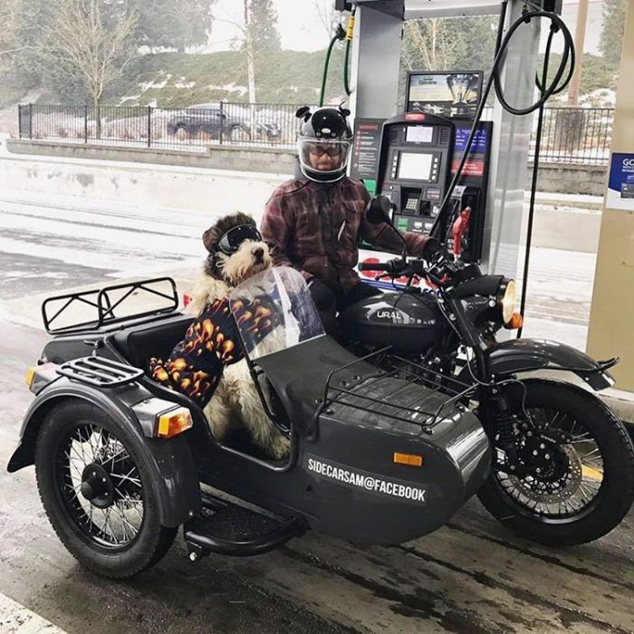 """Как продают мотоциклы """"Урал"""" в США (14 фото)"""