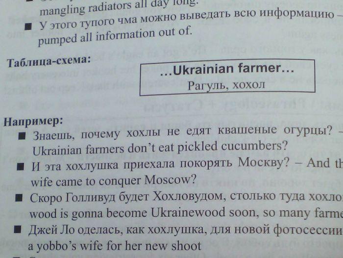 Украинских пользователей сети возмутило слово «хохол» в учебнике по английскому языку (фото)