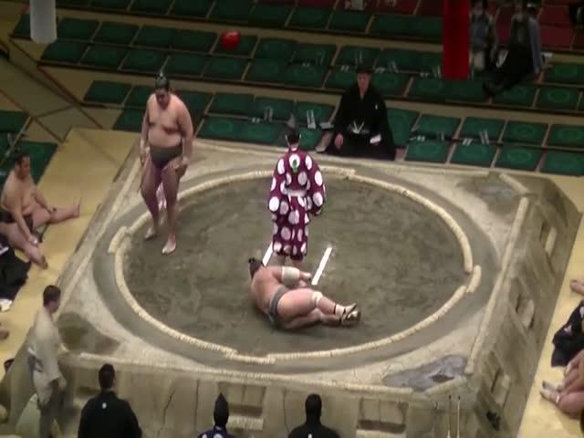 Нокаут в сумо