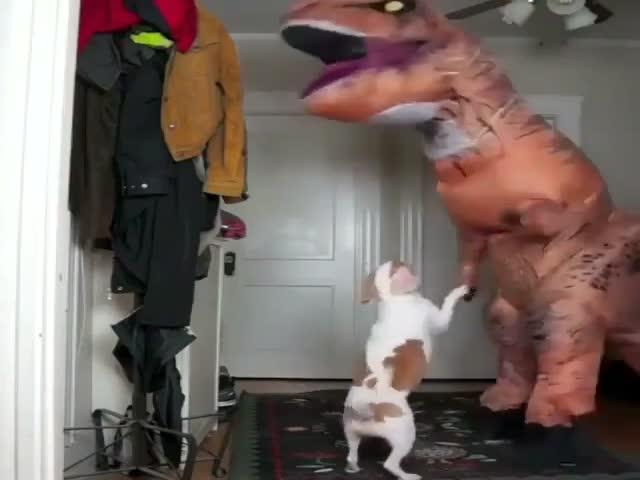 Собака подружилась с динозавром