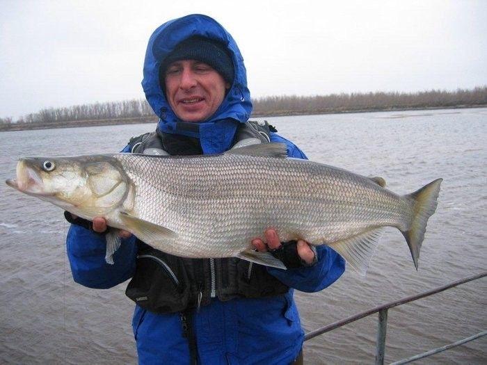 Неожиданная находка рыбаков (2 фото)
