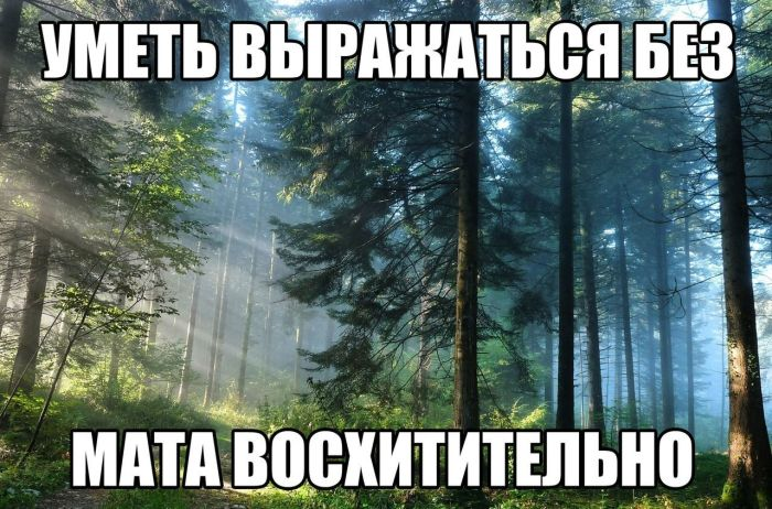 podborka_vecher_40.jpg