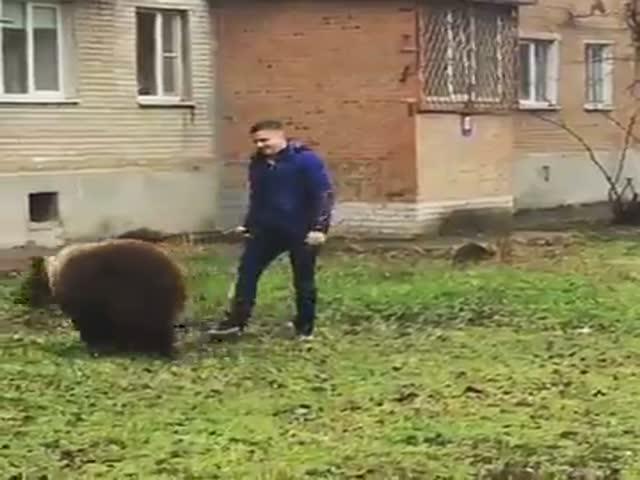 Житель Таганрога выгуливает медведя