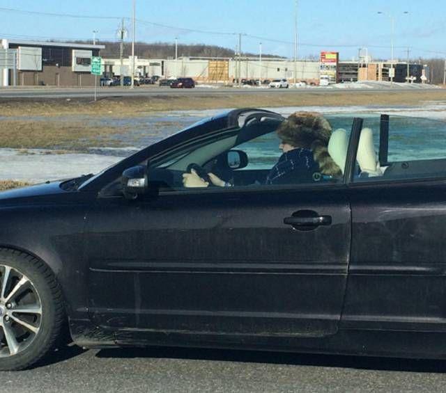 Странности из Канады (40 фото)