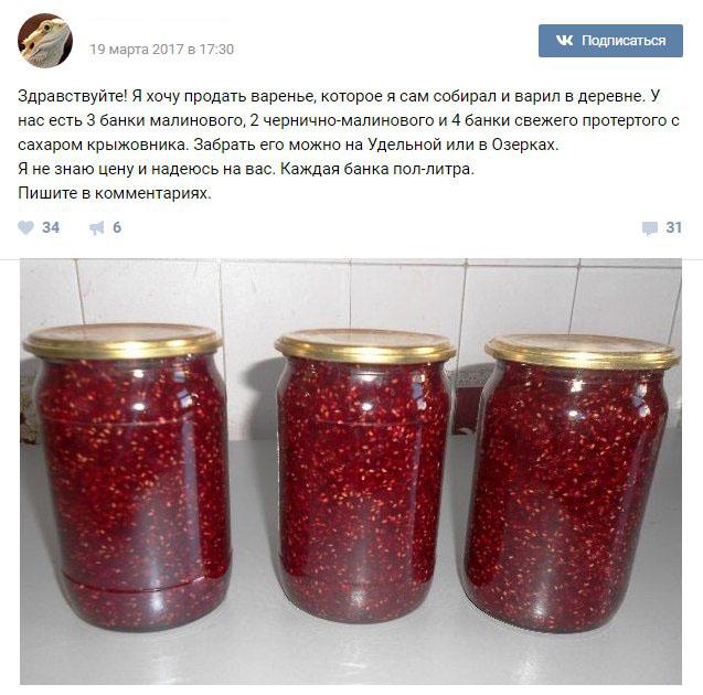 Мальчик из Санкт-Петербурга продал варенье, чтобы купить ящерицу (3 фото)