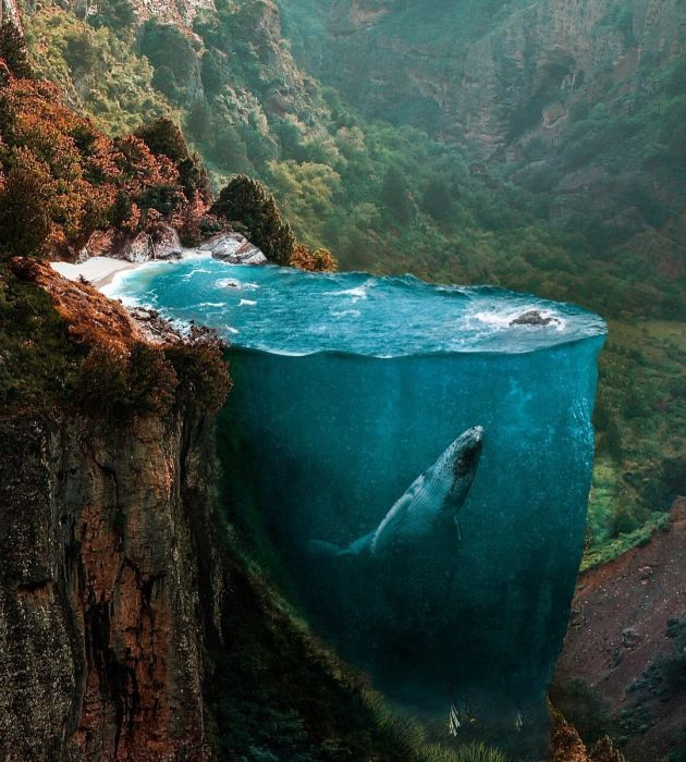 Surrealistik kolajlar-Huseyin Şahin (19 Fotograf)
