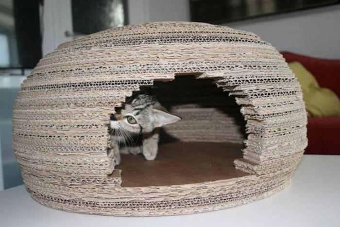 Кошачий домик иглу своими руками (10 фото)