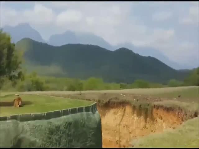 Пытавшаяся допрыгнуть до туристов львица упала в ров