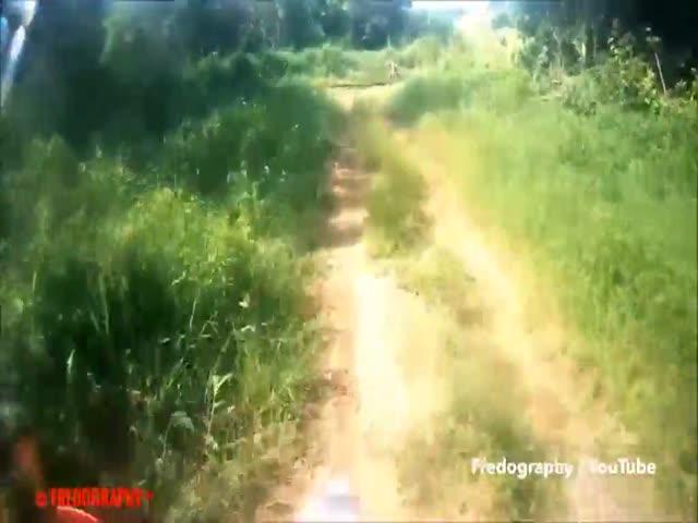 Индонезийские мотоциклисты встретили таинственного дикаря