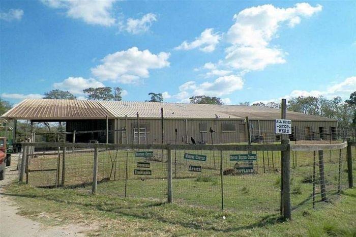 В США продают зоопарк за 7 миллионов долларов (21 фото)