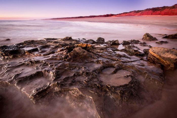 В Австралии обнаружили самый большой след динозавра (4 фото)